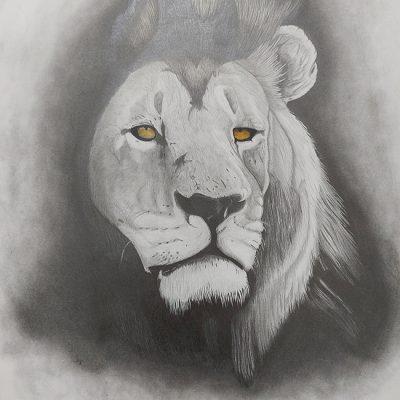 1005-Vigilance-Lion-pencil_