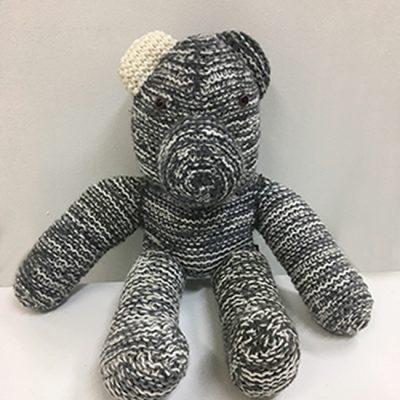 1125 Teddy sml IMG_3064