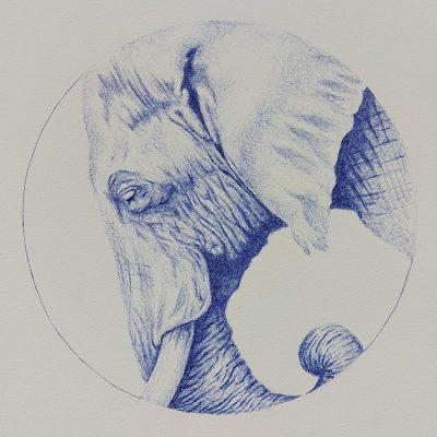 1127-Contemplation-Pen-Elep