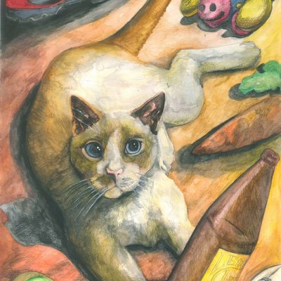 1134---Cat_web